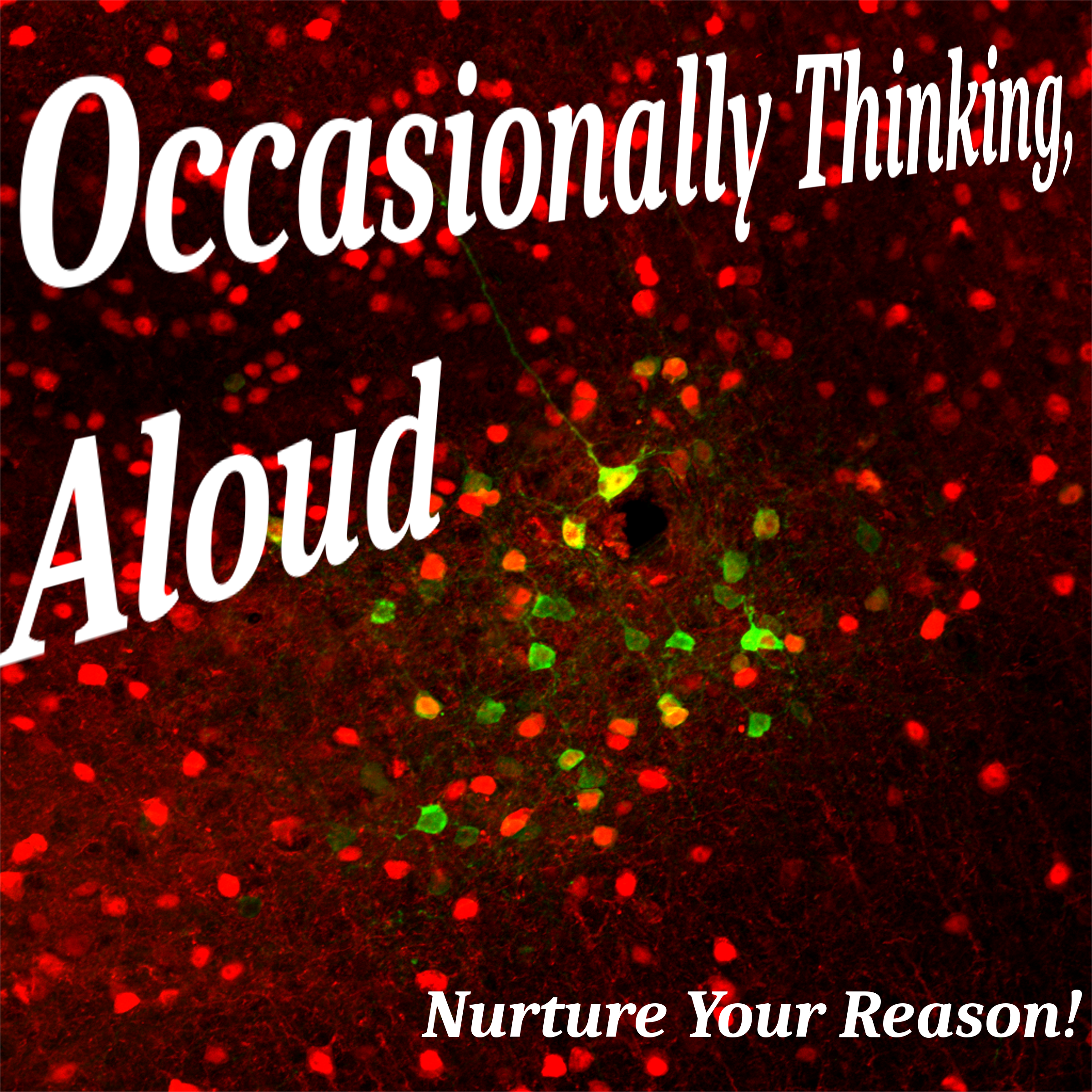 Occasionally Thinking, Aloud